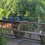Foto de Hacienda del Mar