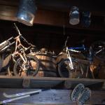 Esposizione biciclette Downhill