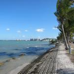 Sarasota By Segway Tours