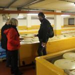 Nicola ci spiega la produzione del formaggio