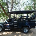 Safari jeep.