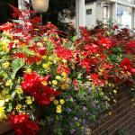 Flowers at the Kings Arms