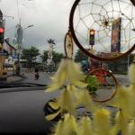 Bird statue form my car