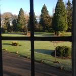 Some of the grounds from the window.