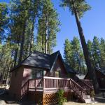 Zephyr Cove Resort Cabin