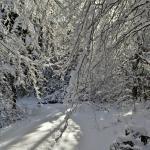 Falls of Hills Creek Trai lin the Snow
