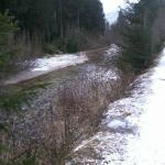 sentiero per Canazei
