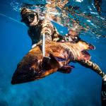Top Shot Spearfishing - Maui