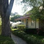 Welcome to Erindale Guest House in the Springtime