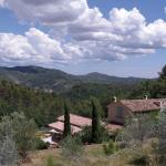 Olives-en-Provence