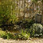 Le jardin où l'on peut manger lorsque les beaux jours sont là