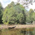 Foto di Tarkine Trails - Tarkine Rainforest Retreat