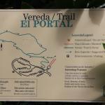 The loop trail