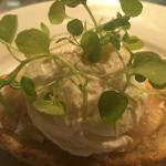 healthy poached egg on gluten free bread