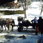 You can get a sleigh ride tour