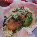 Shrimp taco- yammy