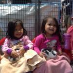 Petting baby rabbits