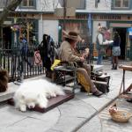 Local Busker and his lovely dog
