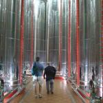 Storage tanks, tour with Mr Nunez