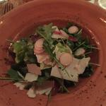 Bibb lettuce and arugula salad