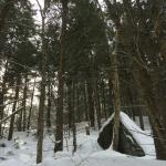 Photo from our snow shoeing in the back of their property