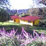 I bungalow con vista sulle piantagioni di caffè
