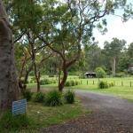 View of the campground area