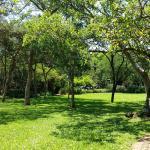 grounds/garden