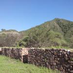 ruinas de shincal