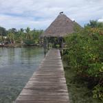Restaurant at Boca del Toro Tour with Cahuita Tours