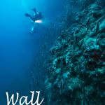 Tech Diving Team Dive Center