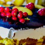 Le nostre torte gelato