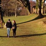 Kilbroney park