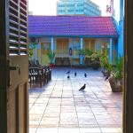 Foto de New Palm Tree Hotel