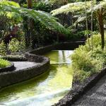 Inside the Presidential Gardens