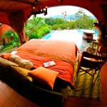 Toad Hall Hotel Arenal Foto