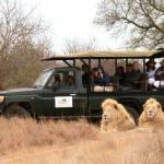 Photo de Elandela Private Game Reserve