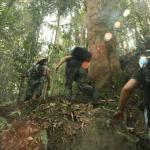 Sumatra Tour Bukit Lawang
