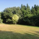 Uma vista do jardim