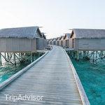 The Centara Ras Fushi Resort & Spa