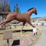 One of the many horse statues out front of the museum.
