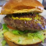 My Hamburger