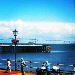 View from the Fig Tree balcony to Penarth Pier