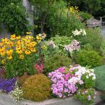 August in the flower garden