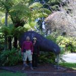 Infront of Kiwi