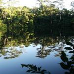 Raintree Lake