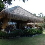 Foto de Siddhartha Ocean Front Resort & Spa