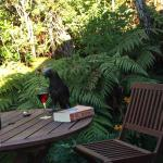 A kala inspecting our wine - happy hour on the porch! Jan 2015