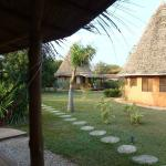 Hotel Grounds - a few nice bungalows 100 m from beach