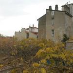 Tonalidades cor terra na CittaVecchia